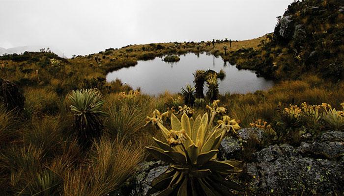 La Laguna de Iguaque