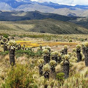 tourisme responsable colombie