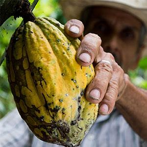 ecologie colombie