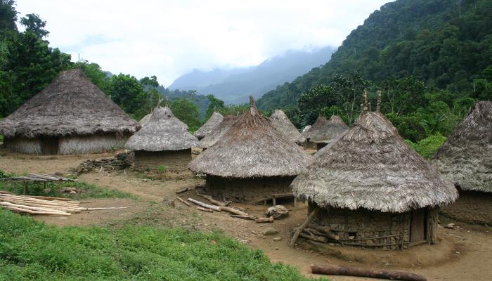 villages kogis