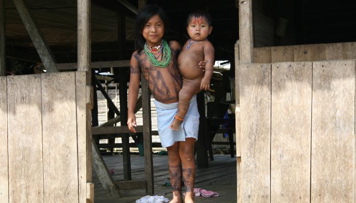 indigène choco
